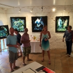 2016 Exposition Galerie Malraux Sarlat